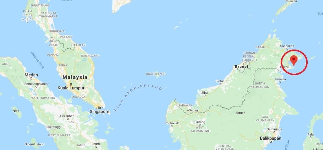 馬來西亞 仙本那 西巴丹 潛水 03