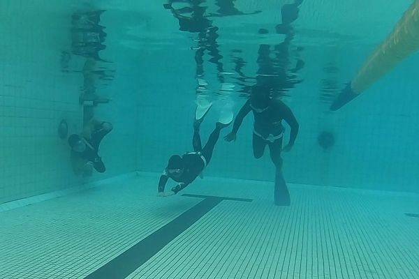 albee freediving 自由潛水 aida