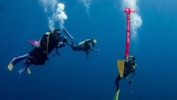 自理能力潛水員,京太郎,出國潛水,神子元,鎚頭鯊,日本潛水