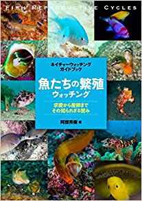 海洋博物誌 魚類辨識