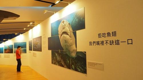 潛水海洋展