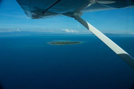 澳洲潛水 深海自由號 Spirit of Freedom 凱恩斯潛水 澳洲padi