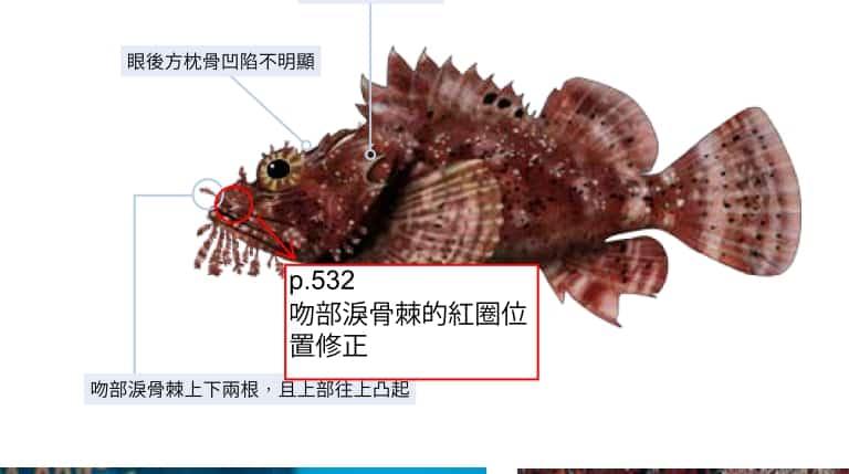 海洋博物誌 東北角 海洋圖鑑 魚類圖鑑